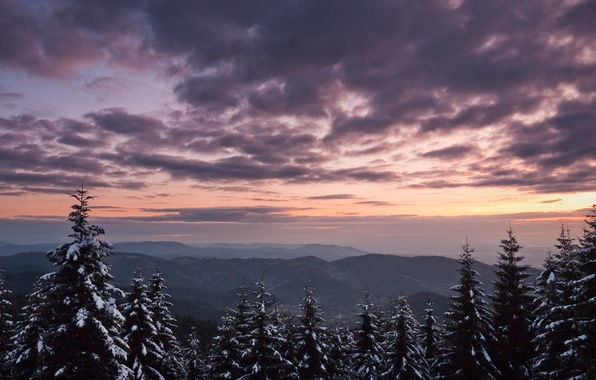 Картинка зима, небо, снег, деревья, горы, природа, дерево, ветер, вершины, елки, елка, высота, гора, ель, ели, …
