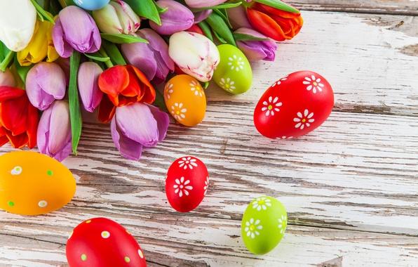 Картинка фото, Цветы, Тюльпаны, Пасха, Яйца, Праздник