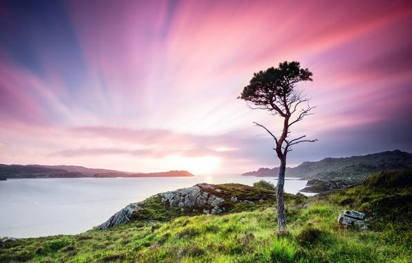 Картинка зелень, лето, трава, вода, деревья, пейзаж, закат, природа, камни, дерево, долина, Шотландия, Великобритания, сумерки, Scotland, …