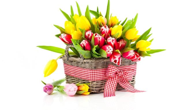 Картинка фото, Цветы, Тюльпаны, Корзинка, Много, Бантик