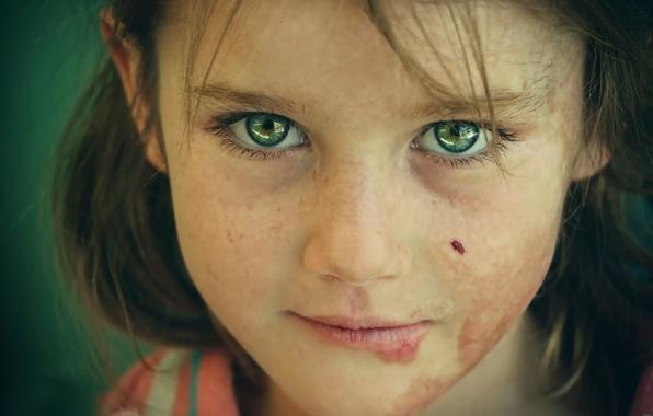 Картинка взгляд, портрет, фотограф, нет войне, a syrian refugee, беженец, Those eyes, Ranj Yousif