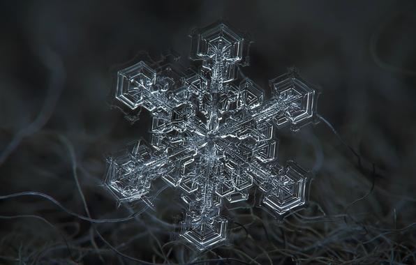 Фото обои зима, макро, снег, волокна, снежинка