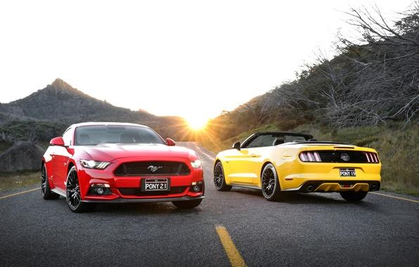 Фото обои форд, мустанг, Mustang, Ford