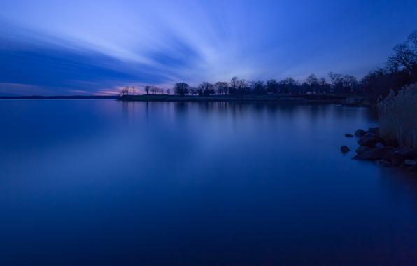 Картинка небо, деревья, закат, озеро, берег, вечер, Лес, сумерки, синее