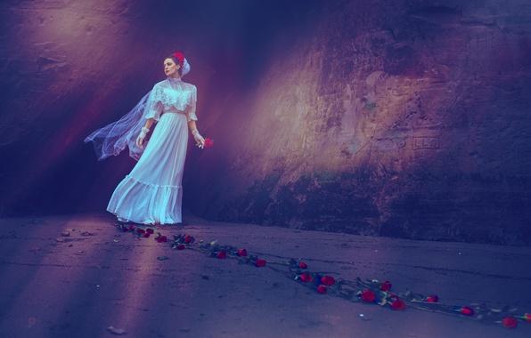 Картинка девушка, фон, розы