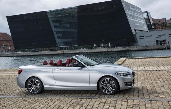 Картинка фото, BMW, Кабриолет, Автомобиль, convertible, Сбоку, 2015, Серебристый, F23, 228i