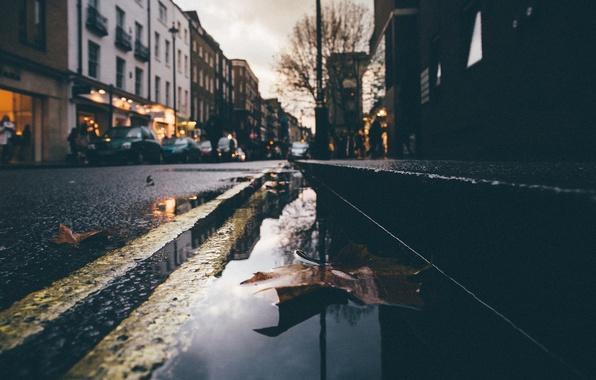 Картинка листья, ночь, отражение, люди, дерево, улица, зеркало, лужа, автомобили, фонарный столб, дождливая
