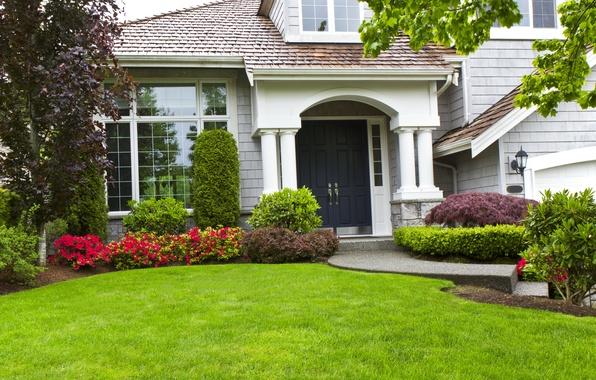 Картинка зелень, трава, листья, деревья, цветы, ветки, дизайн, дом, газон, особняк, кусты