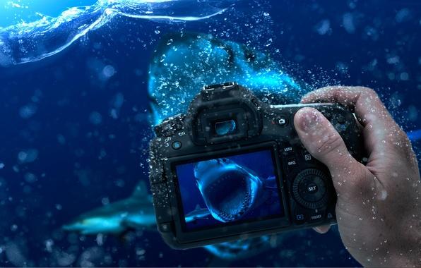 Воды фотоаппарат обои фото картинки