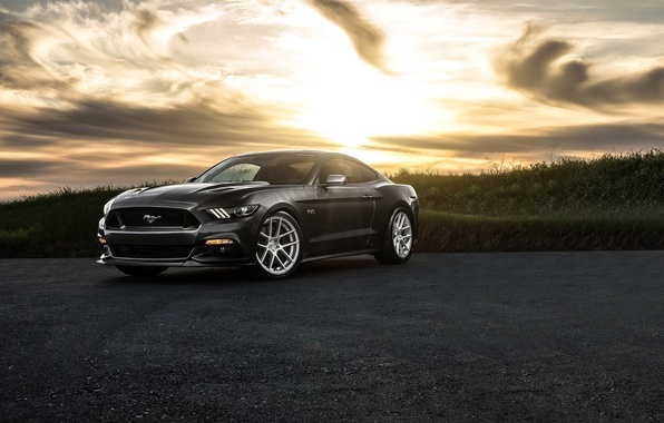 Картинка Mustang, Ford, Muscle, Car, Front, Sunset, Wheels, Avant, 2015, Garde