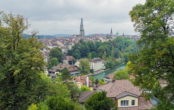 Картинка деревья, река, здания, Швейцария, панорама, Switzerland, Берн, Bern