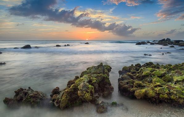 Картинка пляж, тучи, океан, утро, курорт, landscape, resort, Caribbean, Aruba, Arashi Bay