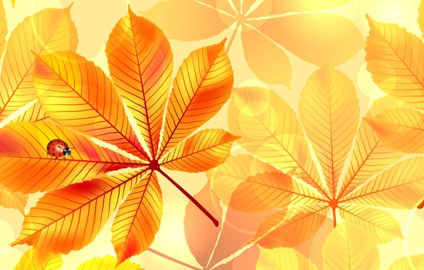 Картинка осень, листья, природа, коллаж, божья коровка, насекомое, каштан