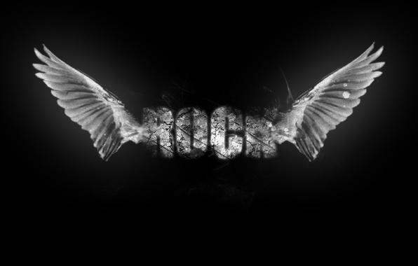 Картинка крылья, music, rock