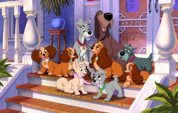 Картинка собаки, дом, мультик, мультфильм, щенки, герои, крыльцо, Леди, персонажи, Леди и Бродяга, Бродяга, Джок, Lady …