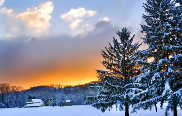 Картинка зима, небо, облака, снег, деревья, пейзаж, закат, природа