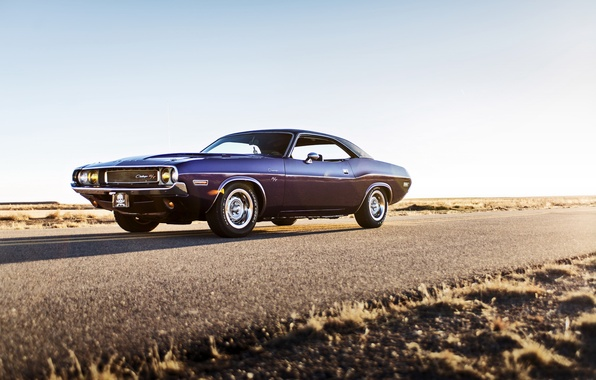 Картинка Dodge, Challenger, muscle car, 1970, lunchbox photoworks