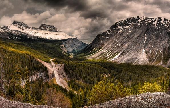 Картинка дорога, лес, Горы