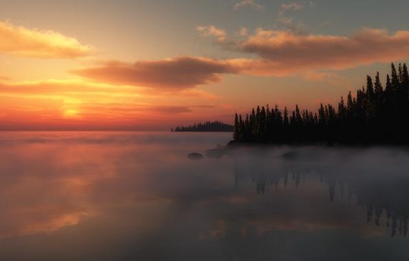 Картинка деревья, закат, туман, озеро