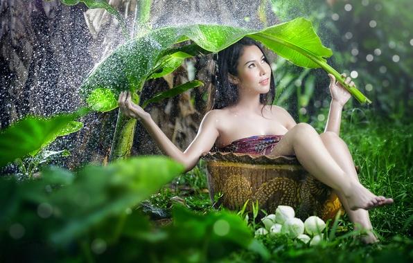 Картинка девушка, лист, зонтик, дождь, настроение, ситуация, азиатка, кадка
