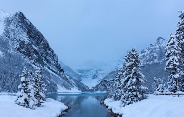 Картинка зима, снег, деревья, горы, озеро, ели, Канада, Альберта, Banff National Park, Alberta, Lake Louise, Canada, …