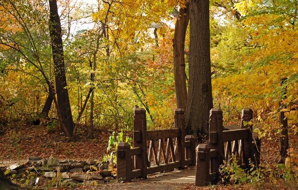 Картинка осень, пейзаж, мост, природа, парк, bridge, wood, resize