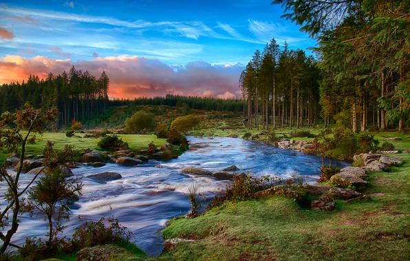 Картинка лес, облака, река, утро, графство Девон, национальный парк Дартмур, Юго-Западная Англия