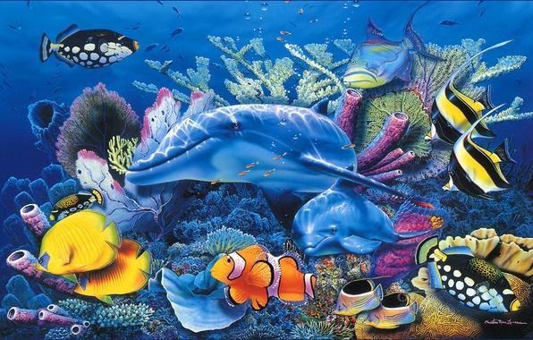 Картинка море, рыбы, дельфин, голубое, аквариум, красиво, Christian, Riese