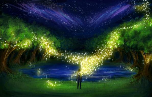 Картинка трава, деревья, ночь, озеро, светлячки, человек, огоньки, арт, искры