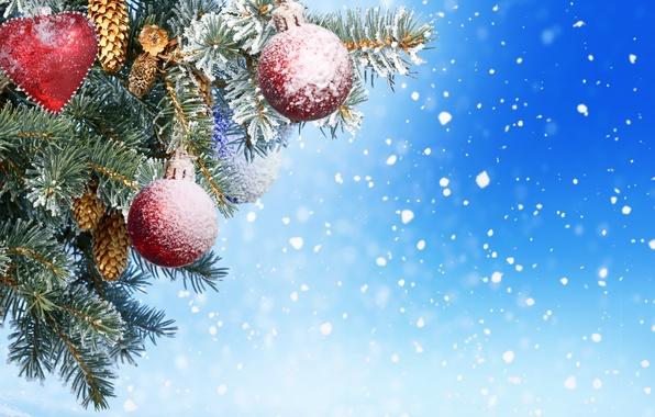 Картинка иголки, игрушки, елка, Новый год, шишки