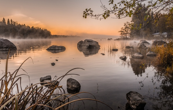 Картинка небо, деревья, туман, озеро, камни, утро