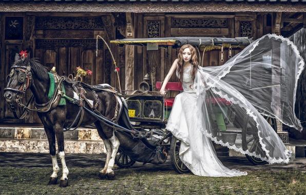 Картинка девушка, конь, лошадь, платье, повозка, азиатка, невеста, кляча