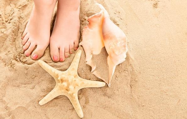 Картинка песок, пляж, лето, ноги, ракушки, summer, beach, legs, sand, shells