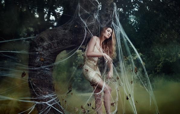 Картинка девушка, паутина, Bella Kotak