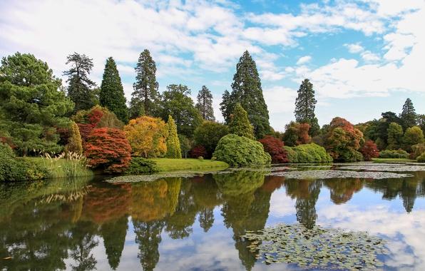 Картинка осень, небо, облака, деревья, пруд, парк