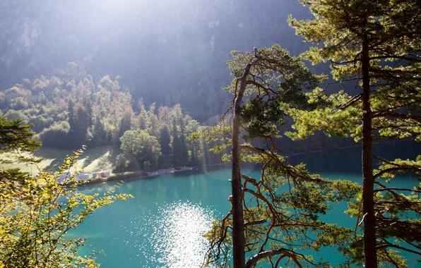 Картинка лес, солнце, лучи, горы, природа, озеро
