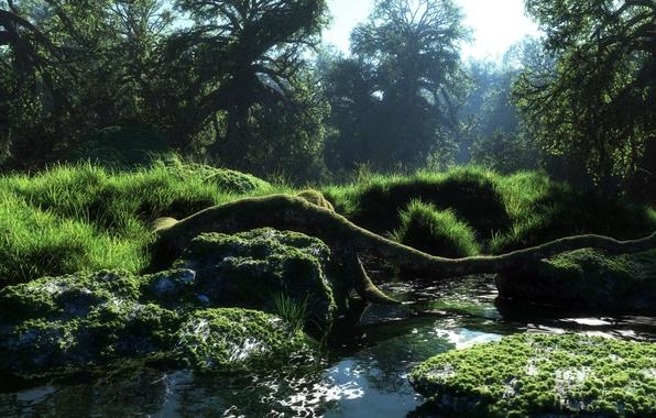 Картинка лес, вода, природа, река, мох, арт, бревно, речка, солнечно, klontak