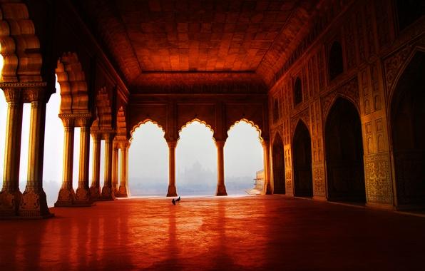 Картинка вид, голуби, колонны, храм, арки, помещение, росписи