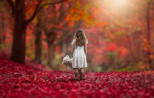 Картинка осень, листья, игрушка, девочка, Never Alone