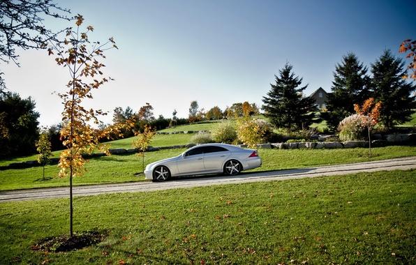 Картинка дорога, пейзаж, природа, тюнинг, CLS, автомобиль, Mercedes Benz, мерседес