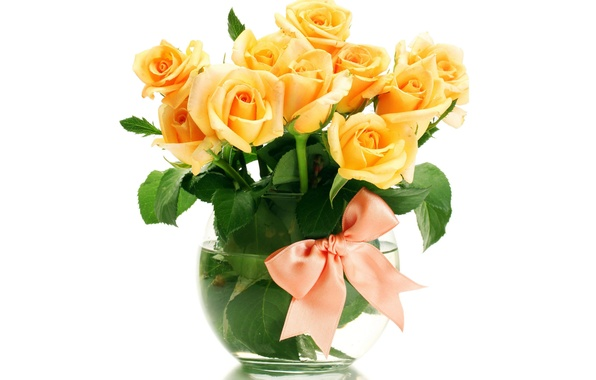 Картинка цветы, розы, букет, ваза, оранжевые, бант, белый фон