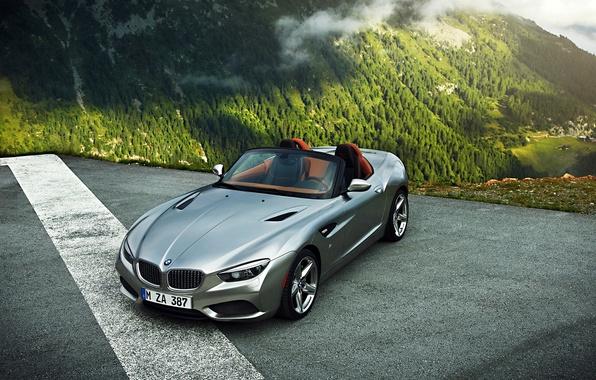 Картинка Roadster, BMW, Mountain, Zagato, Silver, Fog