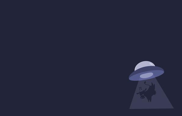 Картинка UFO, cow, OVNI