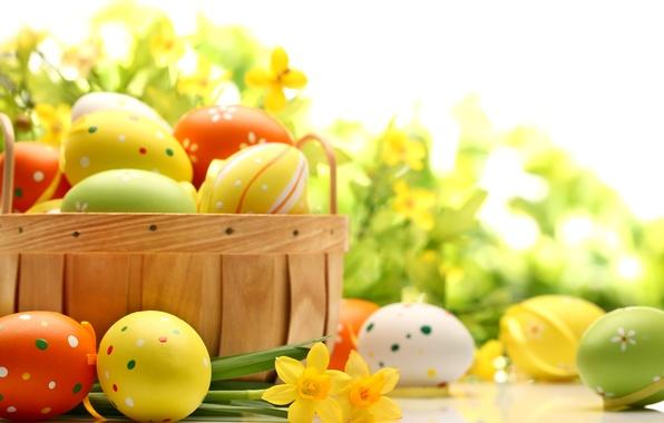 Картинка цветы, стол, праздник, корзина, яйца, весна, желтые, зеленые, Пасха, оранжевые, нарциссы, Easter, пасхальные