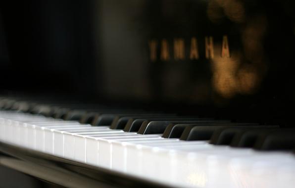 Картинка макро, пианино, macro, piano
