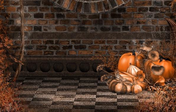 Картинка осень, стена, праздник, паутина, тыквы, Halloween, wall, Хэллоуин, кирпичи, bricks, autumn, holiday, pumpkins, поганки, spiderweb, …