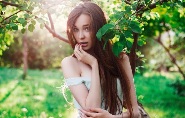 Картинка лето, взгляд, девушка, радость, ветки, лицо, green, модель, портрет, майка, прикосновение, шатенка, ручки, красивая, плечи, …