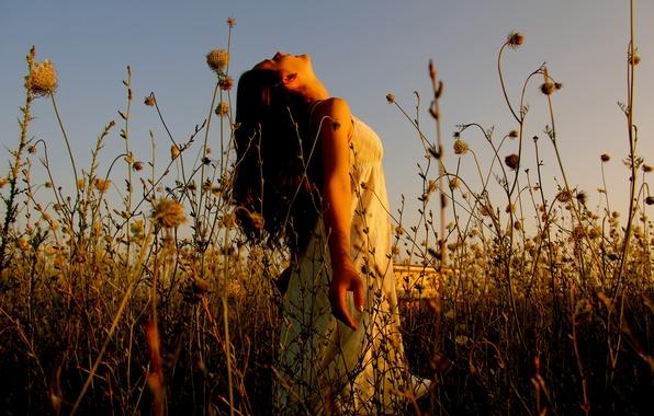 Картинка трава, солнечный свет, в платье