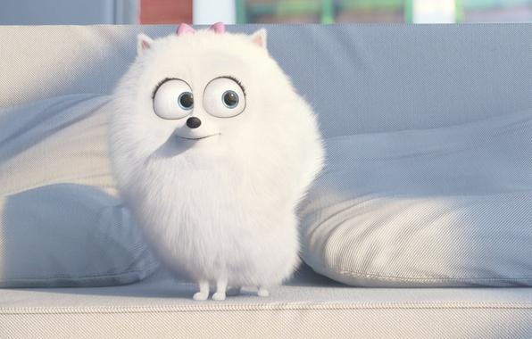 Картинка cinema, white, puppy, dog, cartoon, movie, animal, living room, film, pet, drawing, couch, adventure, official …