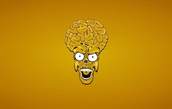 картинка мозги